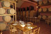tour vino delle langhe