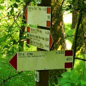 Nei boschi S1 Sentiero del Roero
