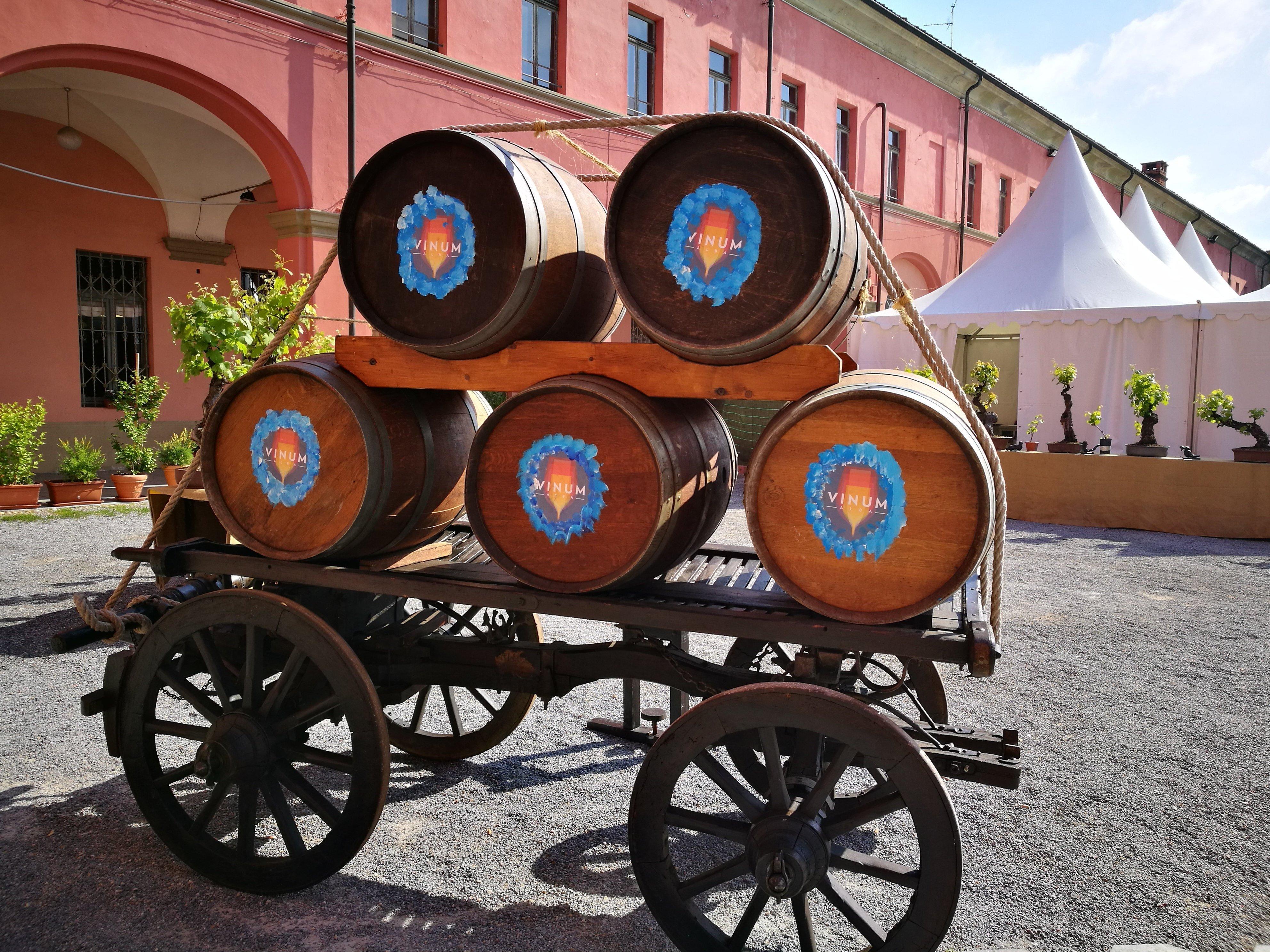 La festa del vino di Alba