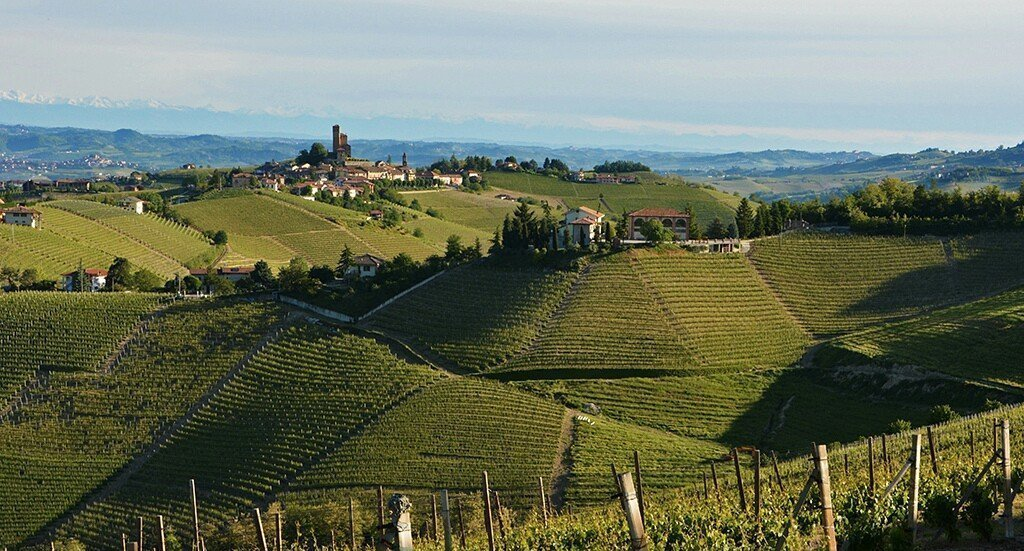 Le Langhe con SlowDays