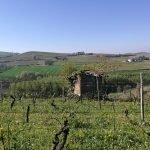 Week end Piemonte: un fine settimana tra cibo e vino Image