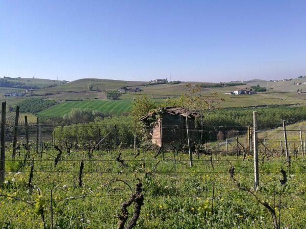 week end Piemonte