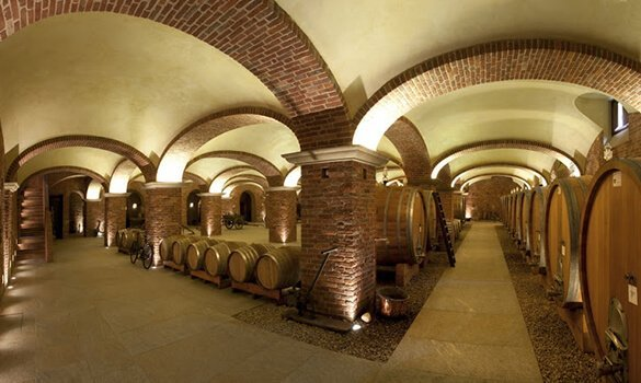 visite cantine langhe