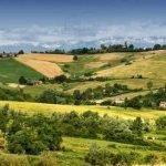Monferrato 03