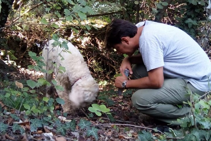 Truffle hunting, a fantastic story!