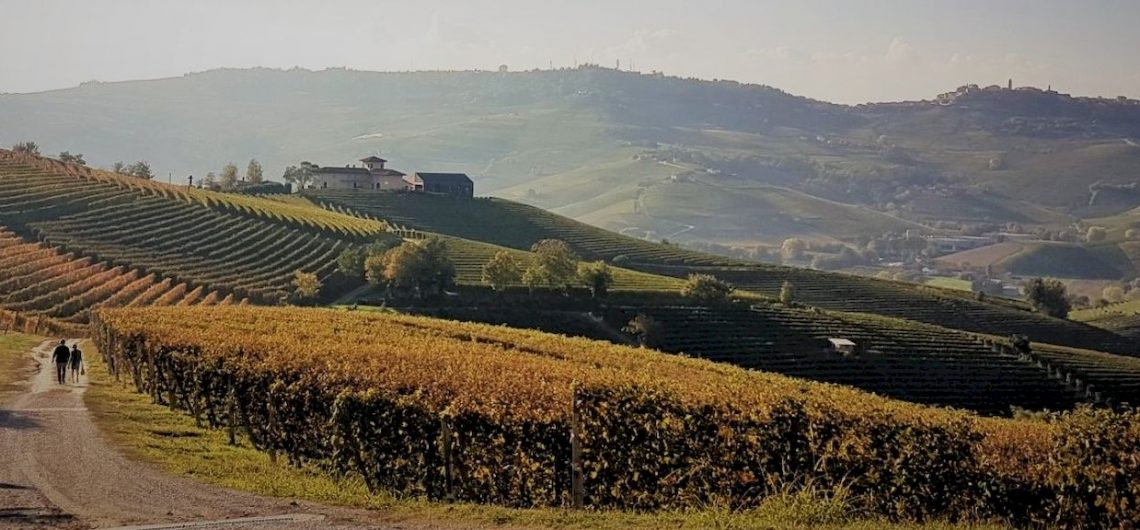 Langhe to get lost in the sunset