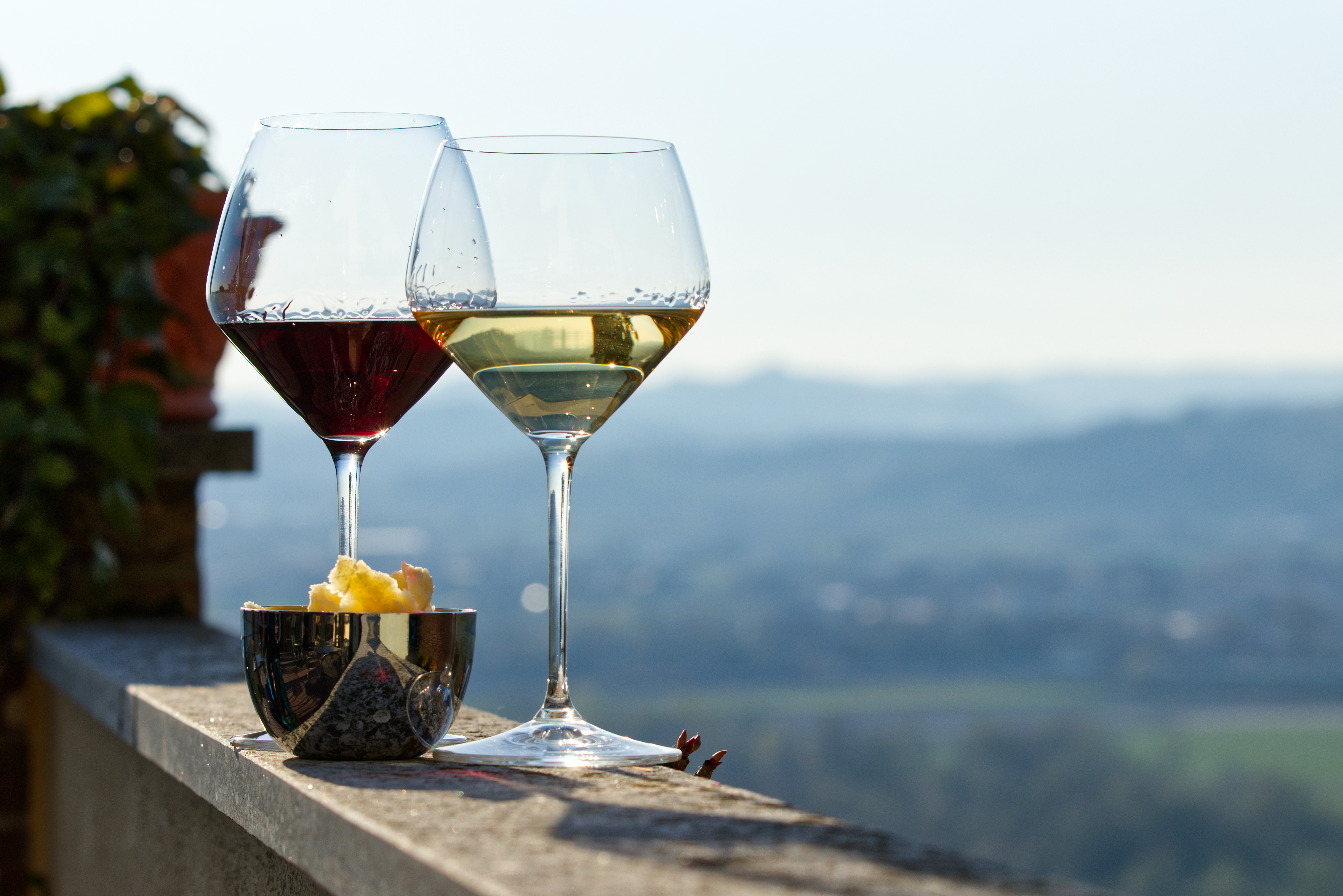 Langhe and Wines