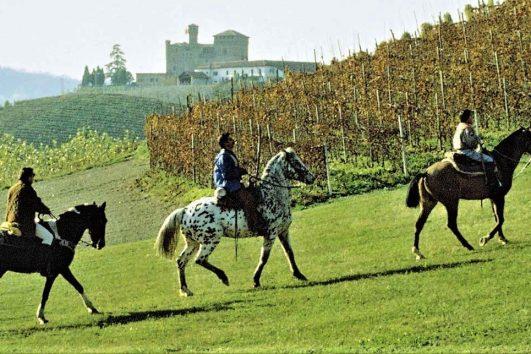 A cavallo nelle Langhe