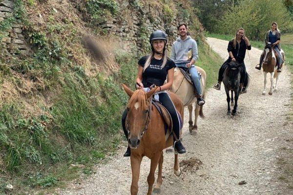escursione a cavallo nelle langhe