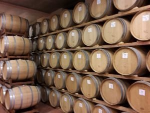 visita in cantina nelle langhe
