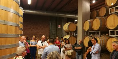 Wine and Food Tour by SlowDays