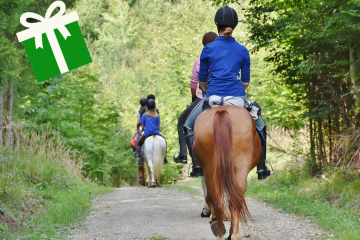 Horseback riding in the langhe