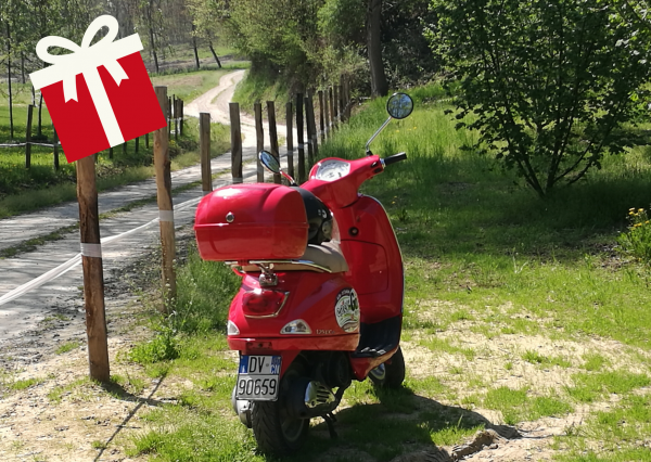 Vespa in the Langhe