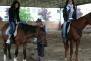 bridal shower and horses