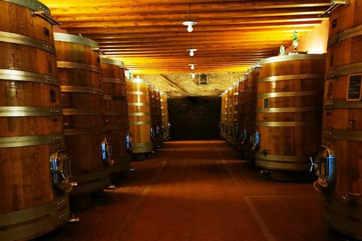 Langhe Wine Tour