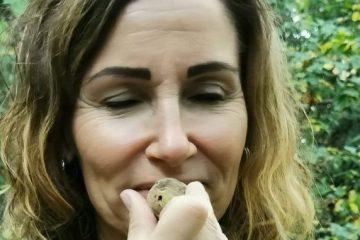 White truffle scent