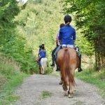Addio al nubilato a cavallo con picnic e giochi Image