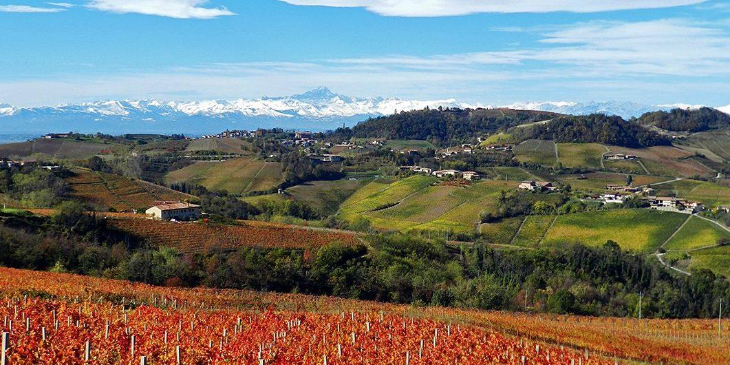5 Attività Top nelle Langhe Wine Tour