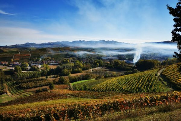 Voucher to give the Langhe