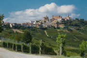 Food and Wine Tour in Italy Piedmont, Langhe Region and Monferrato