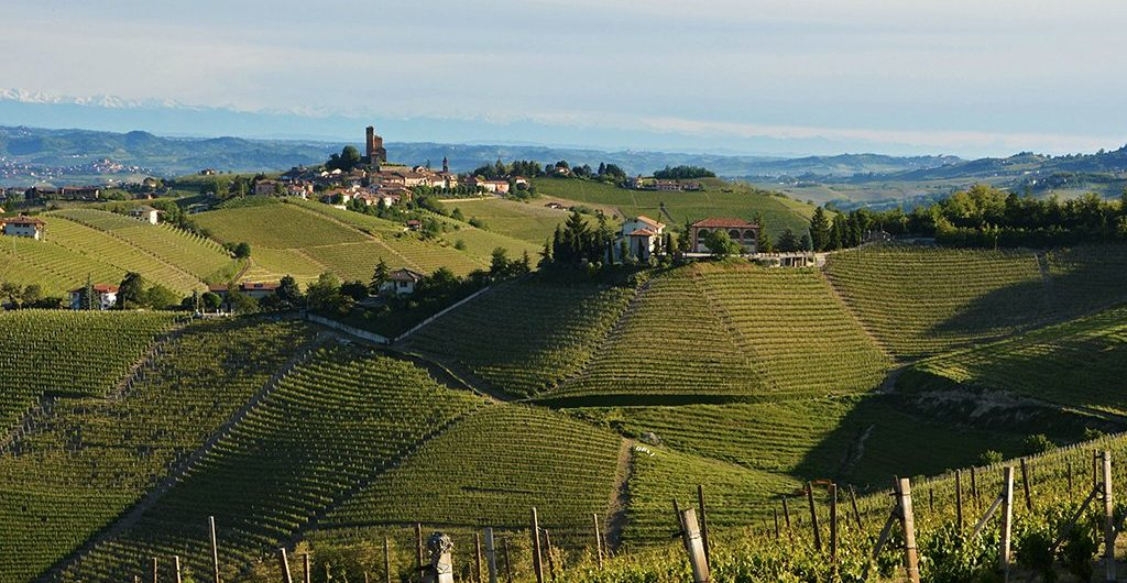 Piedmont and Langhe Wine Tour Delicacies, Food Specialties