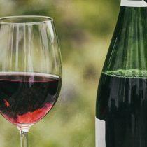 Amazing Piedmonts Wine Tours and Food Tours, Barbaresco Wine