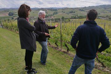 percorso degustazione vini