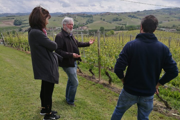 wine tour langhe