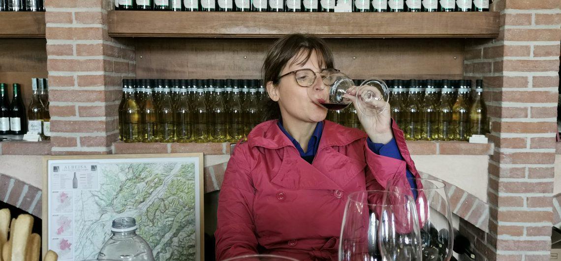 Le migliori cose da fare in Piemonte, Nord Italia: Degustazione di vini