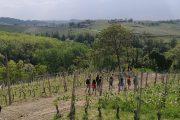 trekking langhe bar to ba
