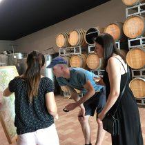 visit Langhe cellars