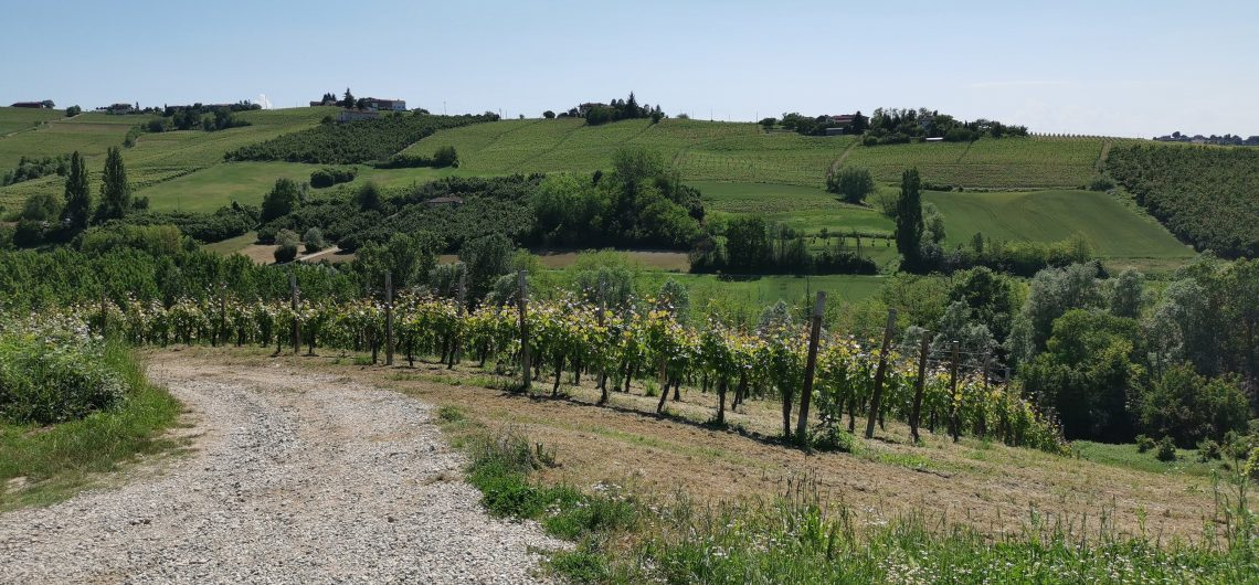 events in the Langhe