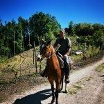 Passeggiata a cavallo in Piemonte con degustazione Image