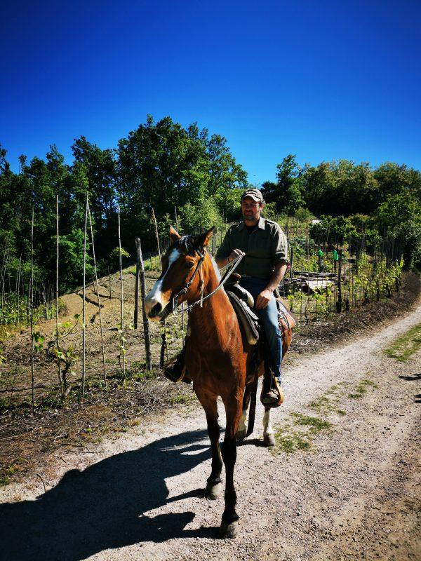 horseback riding in the Langhe