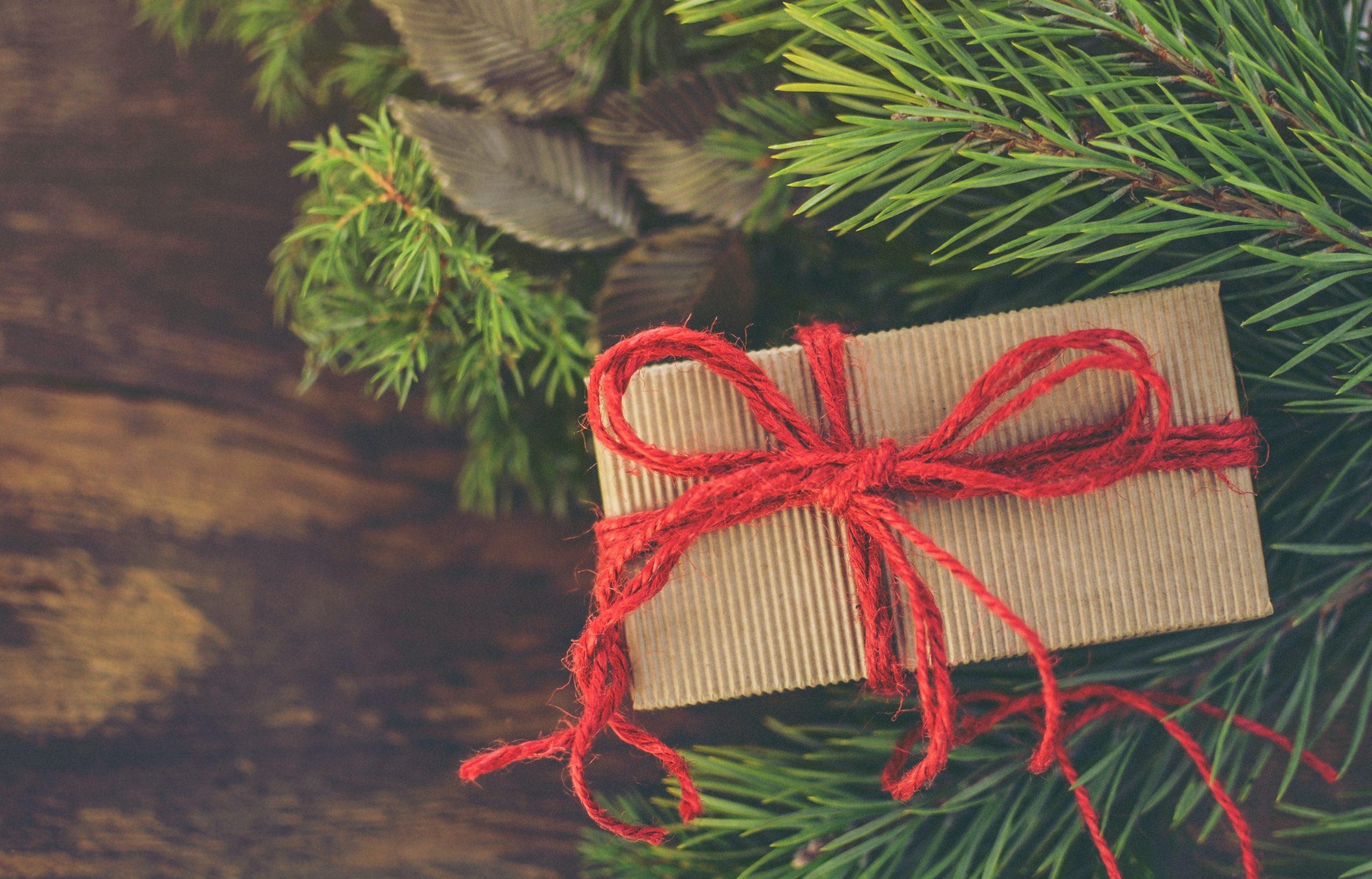 pacchetti regalo esperienze langhe