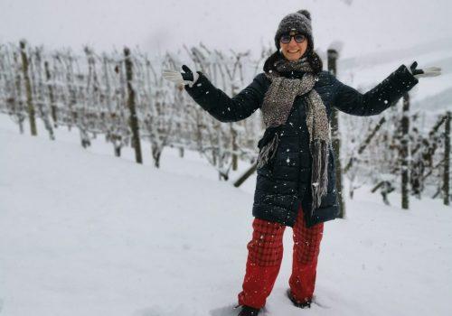 visitare le Langhe in inverno