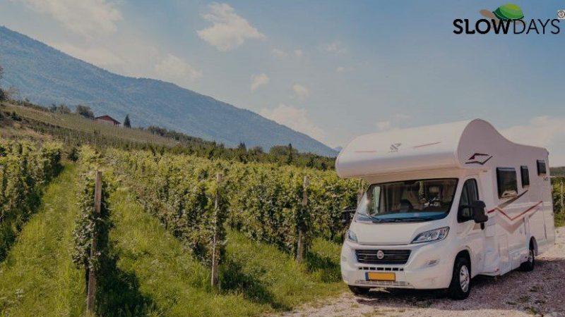 camper nelle vigne