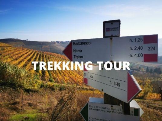 Trekking among the Langhe hills