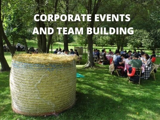 A team building organized for japanese agents